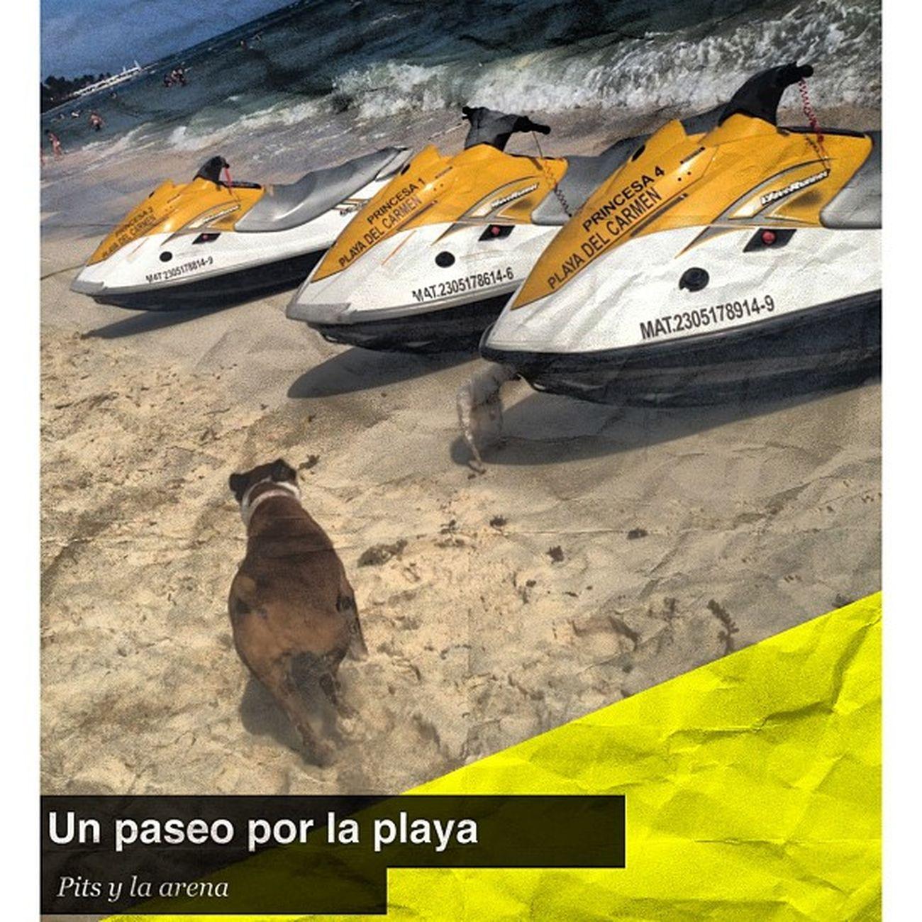 Pita Playa Squaready Quintanaroo Cancun Playadelcarmen Traveler Travel Jetsky Sun Sunset