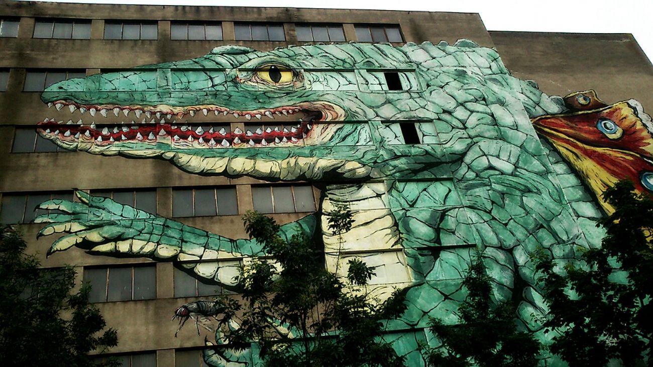 Street Photography Old Building  Street Art/Graffiti La Cocollona
