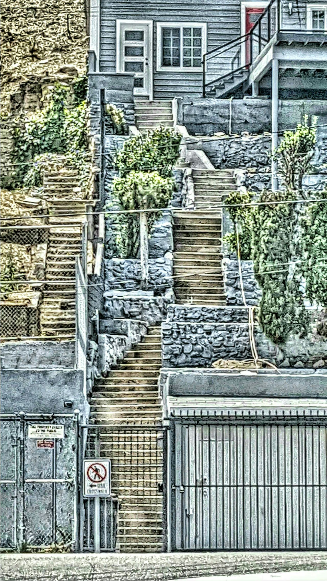 Stairs in echo park are serious !!!!