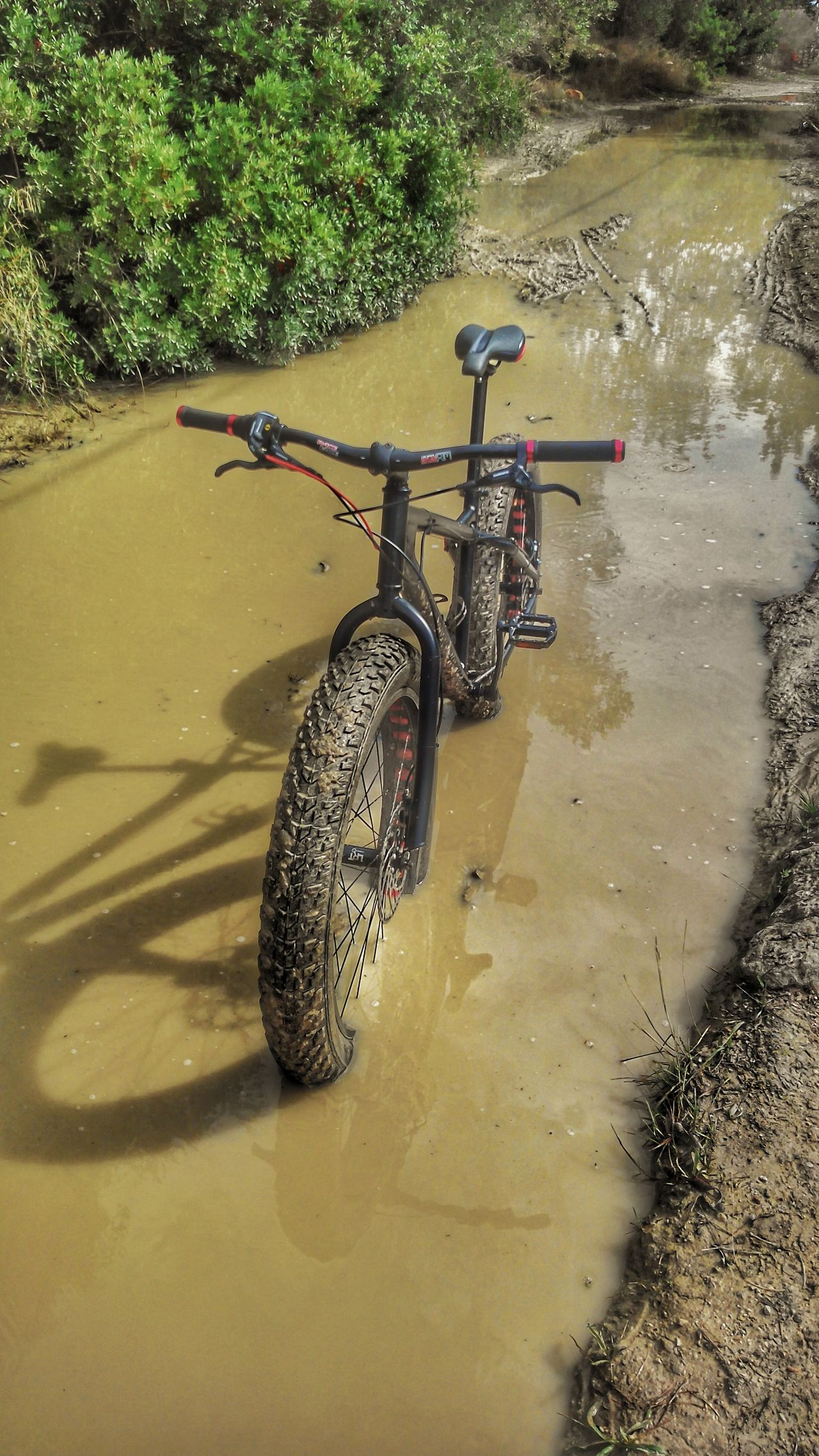 Fatbike Sports Photography Mallorca, Bicycle Mode Of Transport No People High Angle View Nature Muddy Track