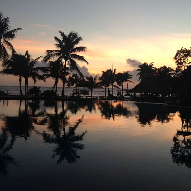 Reflection Rippled Silhouette Standing Water Sun Sunrise Sunset Tranquil Scene Tranquility Tropical Climate Tropical Paradise Water