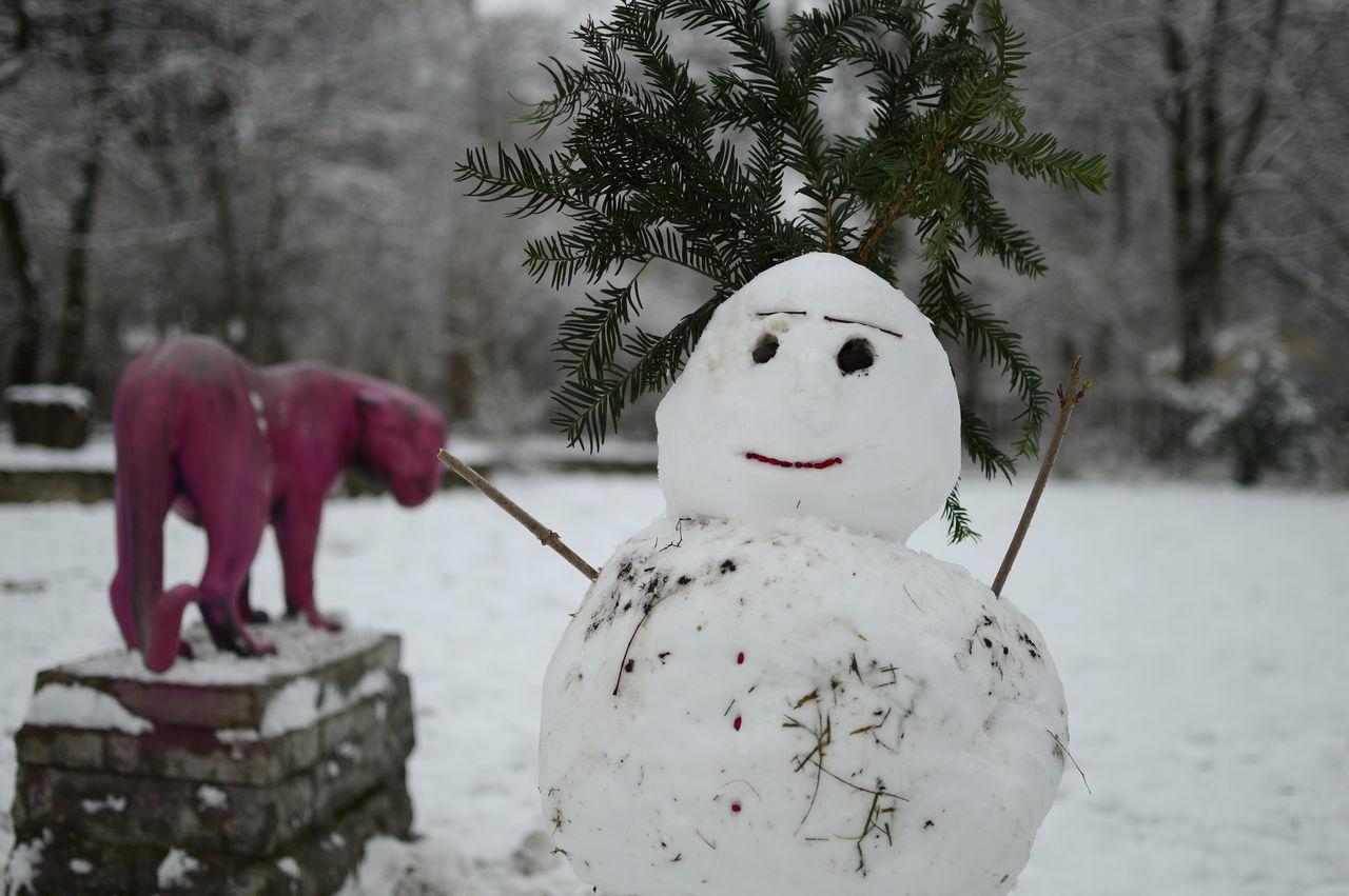 Beautiful stock photos of puma, animal representation, winter, snowman, nature
