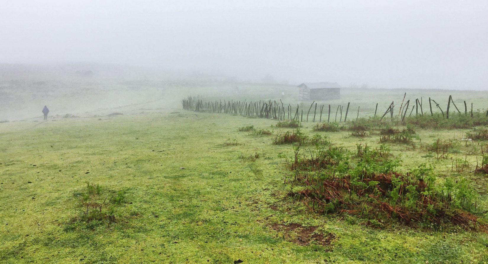 The Cabin Lanscape Photography Fog Foggy