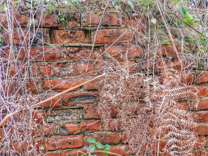 Remains Of Mining Industry Tramway North Yorkshire Old Brickwork Is Amazing...