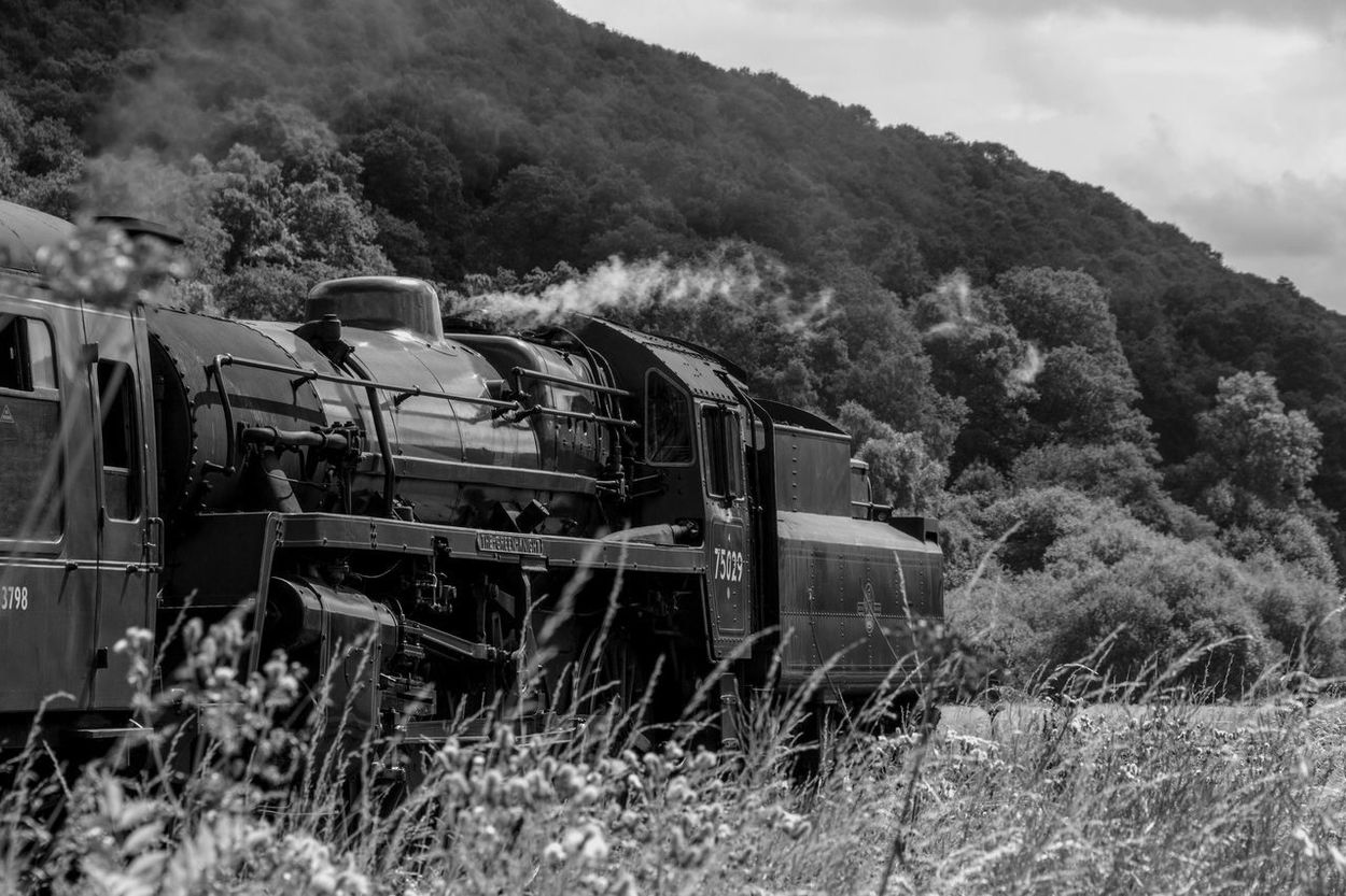 Day Grass Landscape Locomotive Mode Of Transport Mountain Nature No People Old-fashioned Outdoors Sky Steam Train Train - Vehicle Transportation Tree