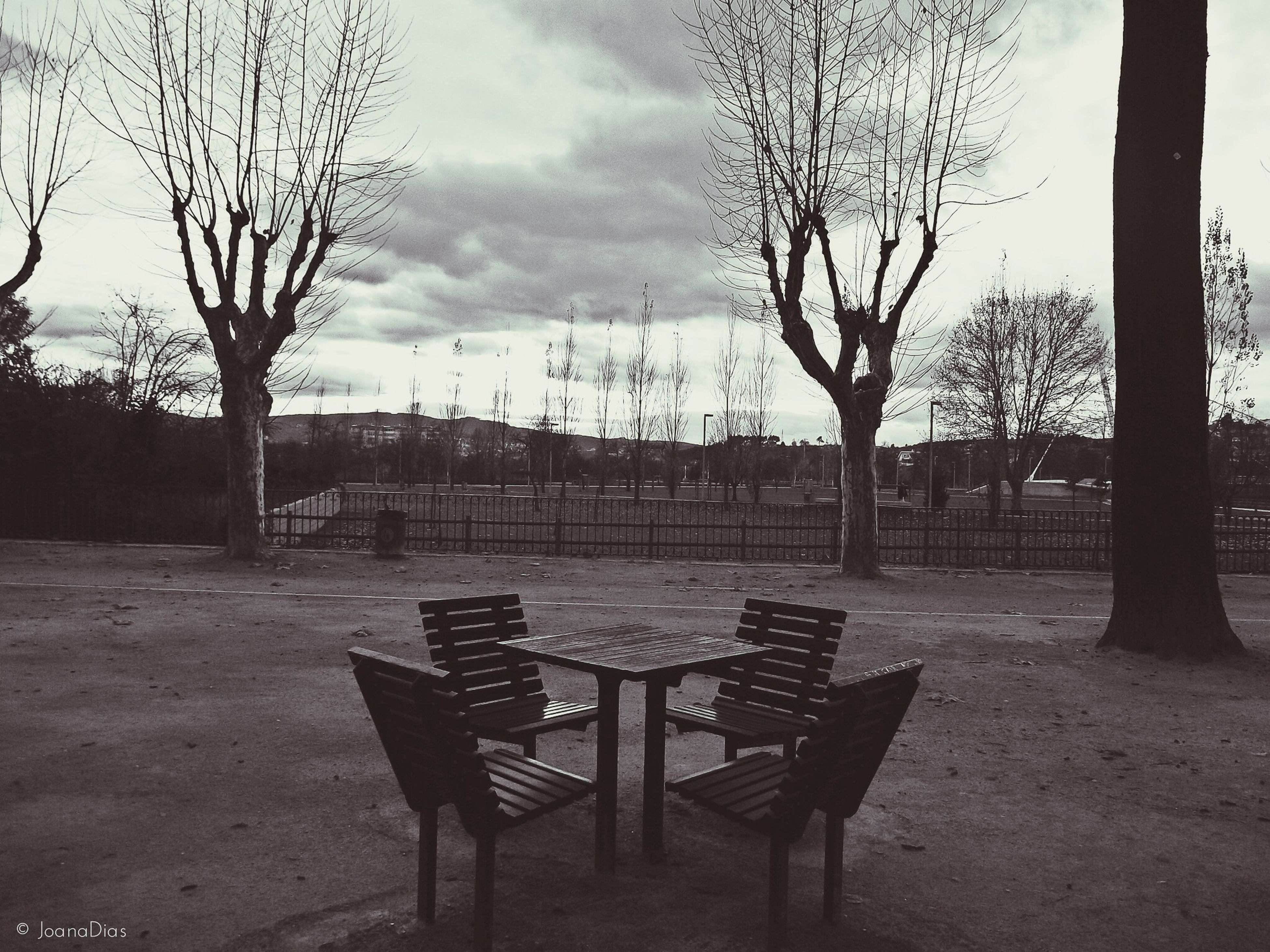 tree, empty, sky, chair, absence, bench, bare tree, table, tranquility, seat, cloud - sky, tree trunk, tranquil scene, nature, built structure, day, no people, branch, park - man made space, park bench