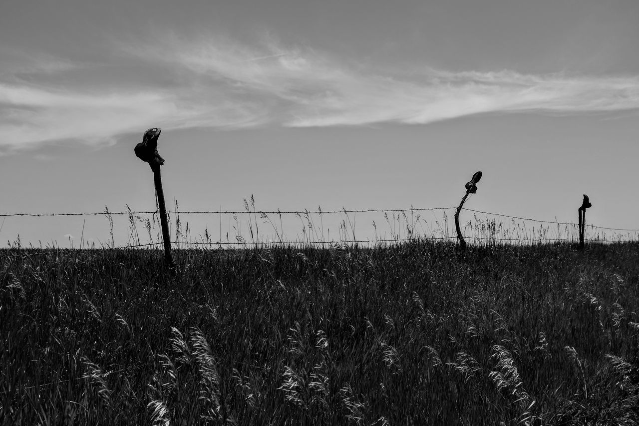 Visual Journal June 2017 Thayer County, Nebraska - http://www.nebraskalife.com/If-The-Boot-Fits/ B&w Photography Barbed Wire Barbed Wire Fence Camera Work Cowboy Boots Everyday Lives EyeEm Best Shots EyeEm Gallery Farm Life Farmlife Fence Field Fufjifilm X100S FUJIFILM X-T1 Getty Images Growth Nature Outdoors Pasture Photo Diary Photo Essay Rural America Small Town Stories Traditional Culture Visual Journal