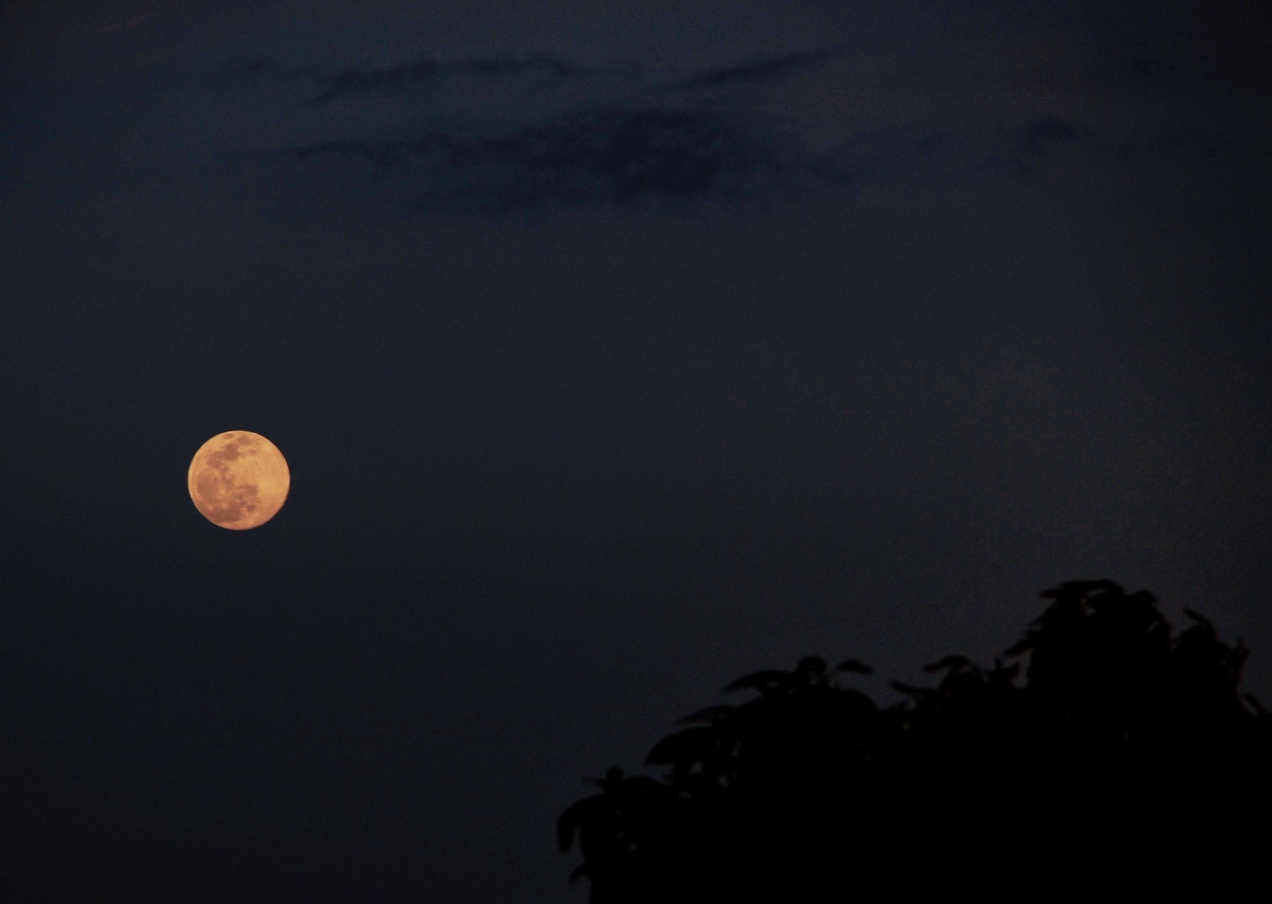 night, moon, low angle view, copy space, sky, full moon, astronomy, silhouette, beauty in nature, tranquility, dark, scenics, clear sky, tranquil scene, nature, planetary moon, circle, dusk, outdoors, no people