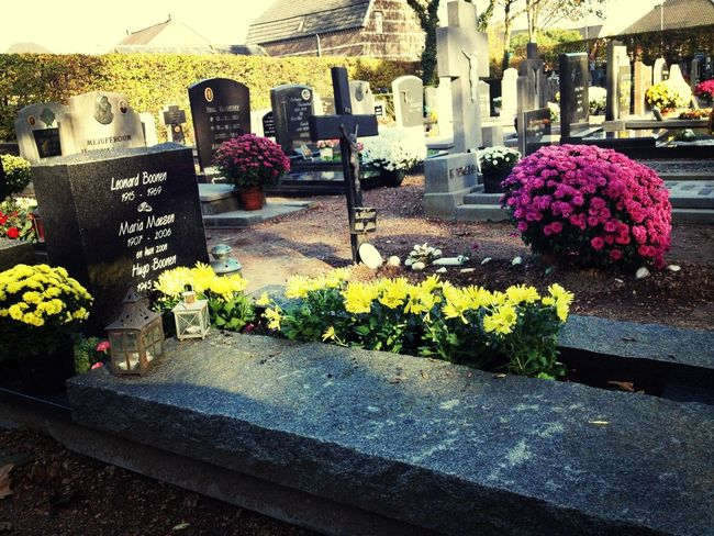 AllSaintsDay ! Show some respect for the dead people . Not only today ... But always Grandma i still miss you like crazy ? Cemetery Nationalholiday
