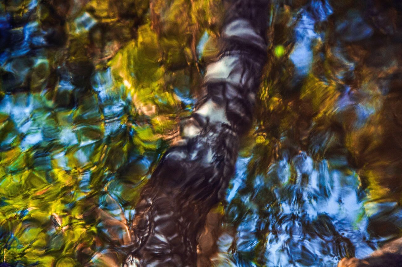 Abstract birch Birch Water Nature Reflection Photography Abstract Colors Paint Nature_collection Nature Photography Ekaterinburg_foto Ekaterinburg Ekaterinburgcity Ekb Ekbfoto Art Naturephotography вода отражение отражение в воде Природа фото краски  искусство береза