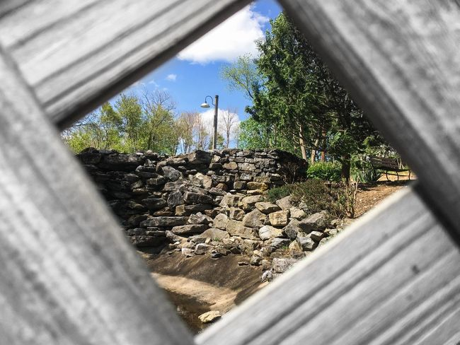 👀 Check This Out Fence Rocks Taking Photos Rock Wall Nature Nature Photography Nature_collection Quick Shot Sneak Peek Peeking Peeking Through Beautiful Nature Beautiful Day