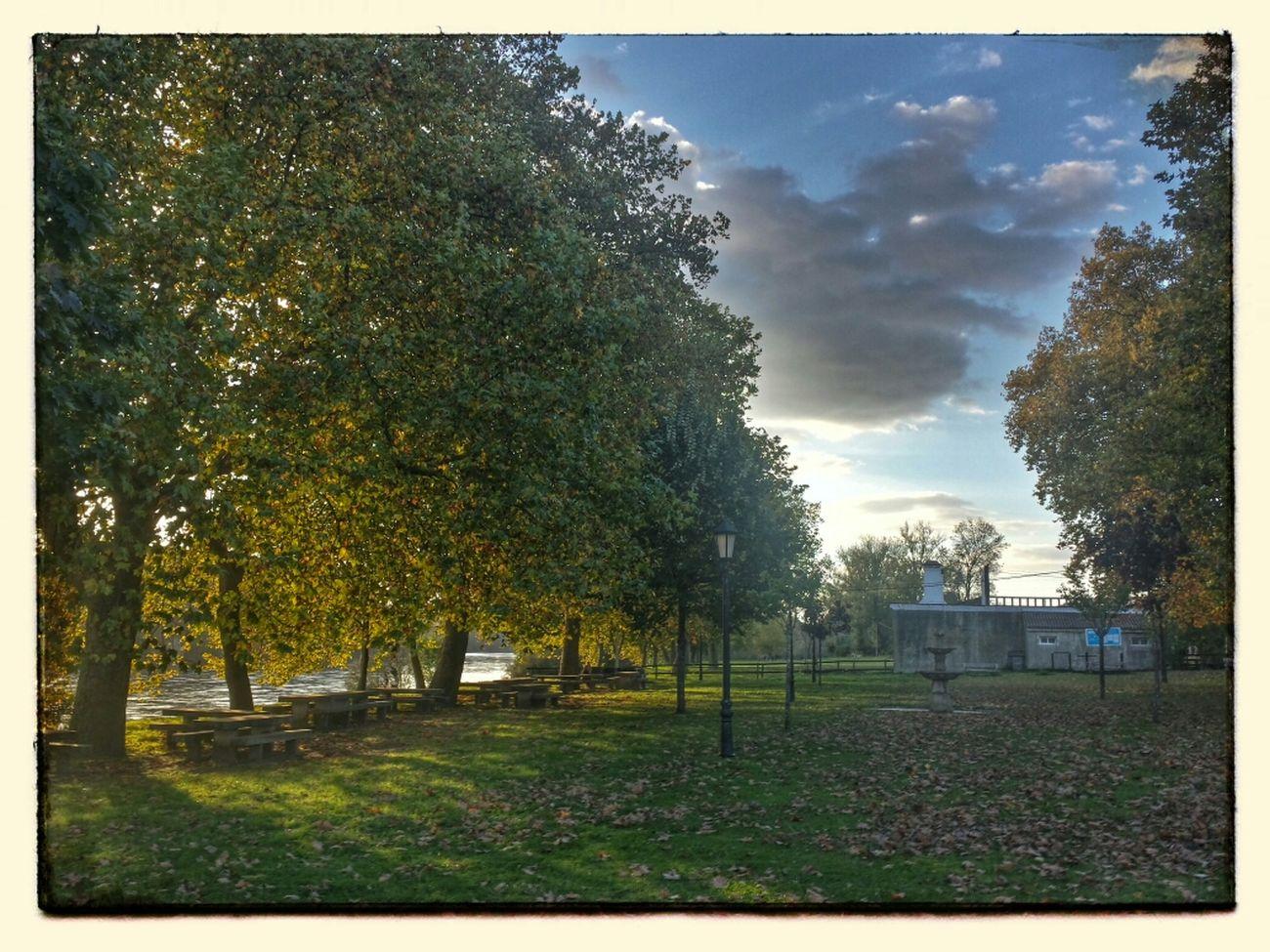 Outono na Ribeira de Caldelas Otoño Autumn
