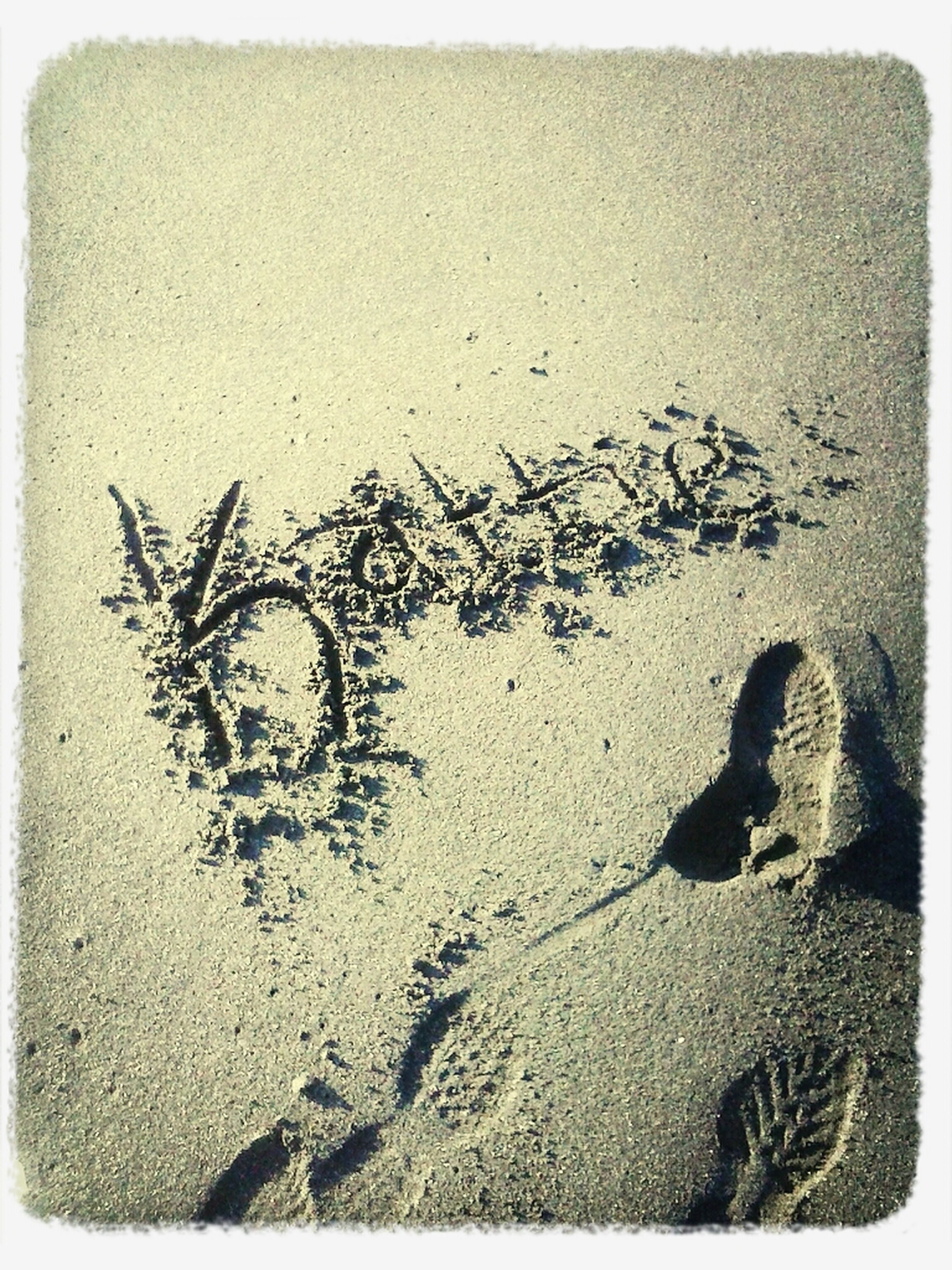 transfer print, auto post production filter, text, western script, sand, footprint, communication, wall - building feature, high angle view, close-up, creativity, outdoors, day, love, art, graffiti, textured, beach, heart shape, no people
