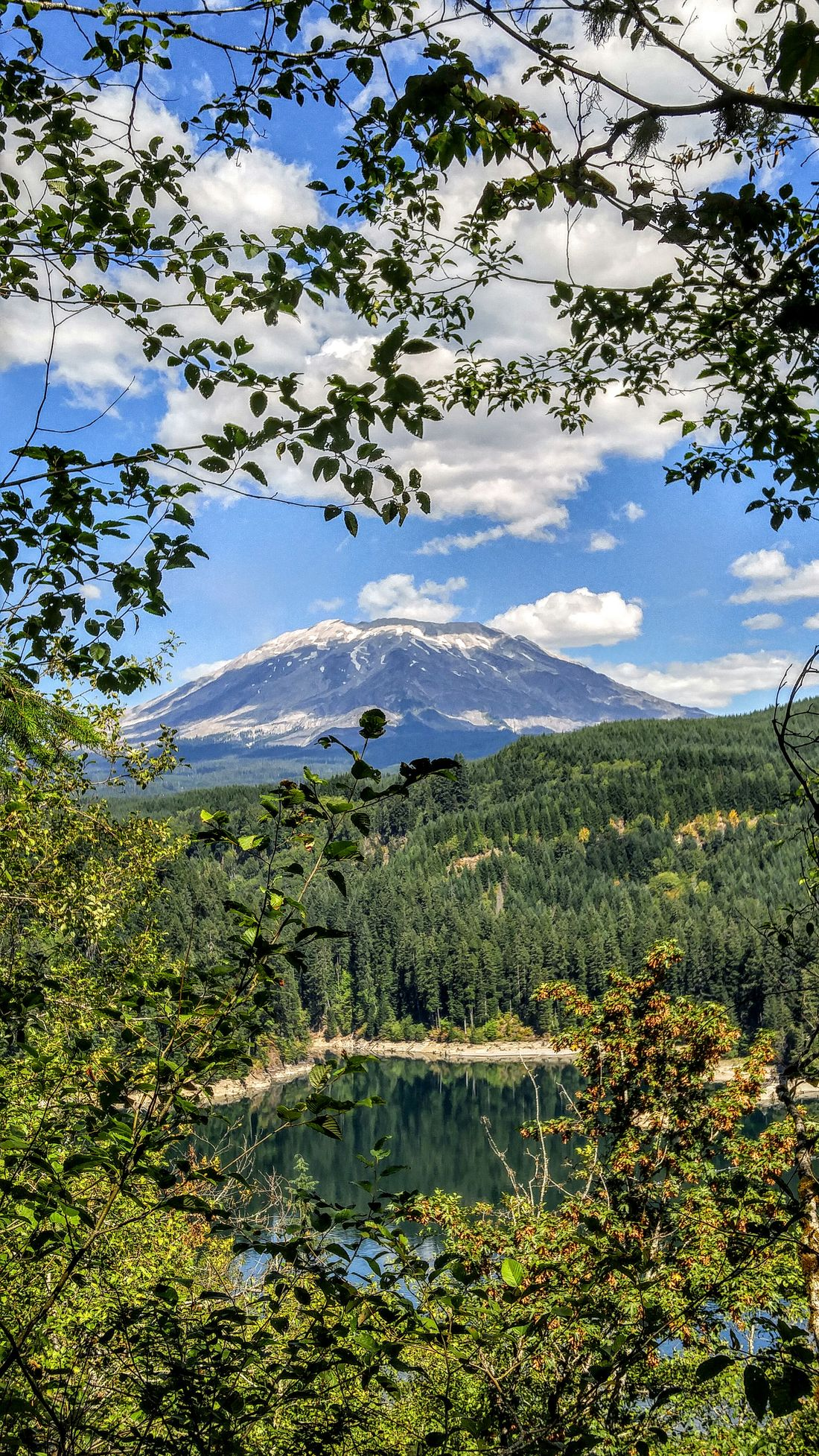 Mount St. Helens Mount St Helens Valcano Volcano Washington State Mountains Mountainscape Nature Nature Photography