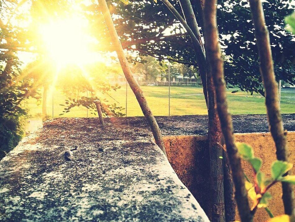 Sunset ESSU Campus Baseball Field