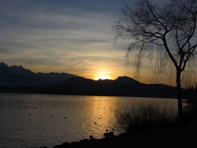 A sunset in Luzern Sunset Nature Sky Landscape Tranquility Scenics Beauty In Nature Mountain Range Non-urban Scene Sun Water Tree Lake View Peaceful