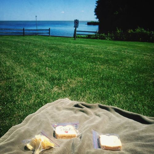 He surprised my with a picnic yesterday? Picnic Lake Erie First Eyeem Photo