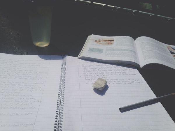 Studying Enjoying The Sun Cucumber Water Study Time