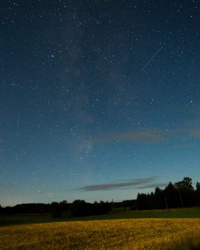 Perseids hunt! Star - Space Field Night Astronomy Landscape Beauty In Nature Nature Galaxy Milky Way Sky Nikon Midnight Lithuania Perseids Agriculture Tranquility Scenics Tranquil Scene Rural Scene No People Constellation Outdoors Space Perseids