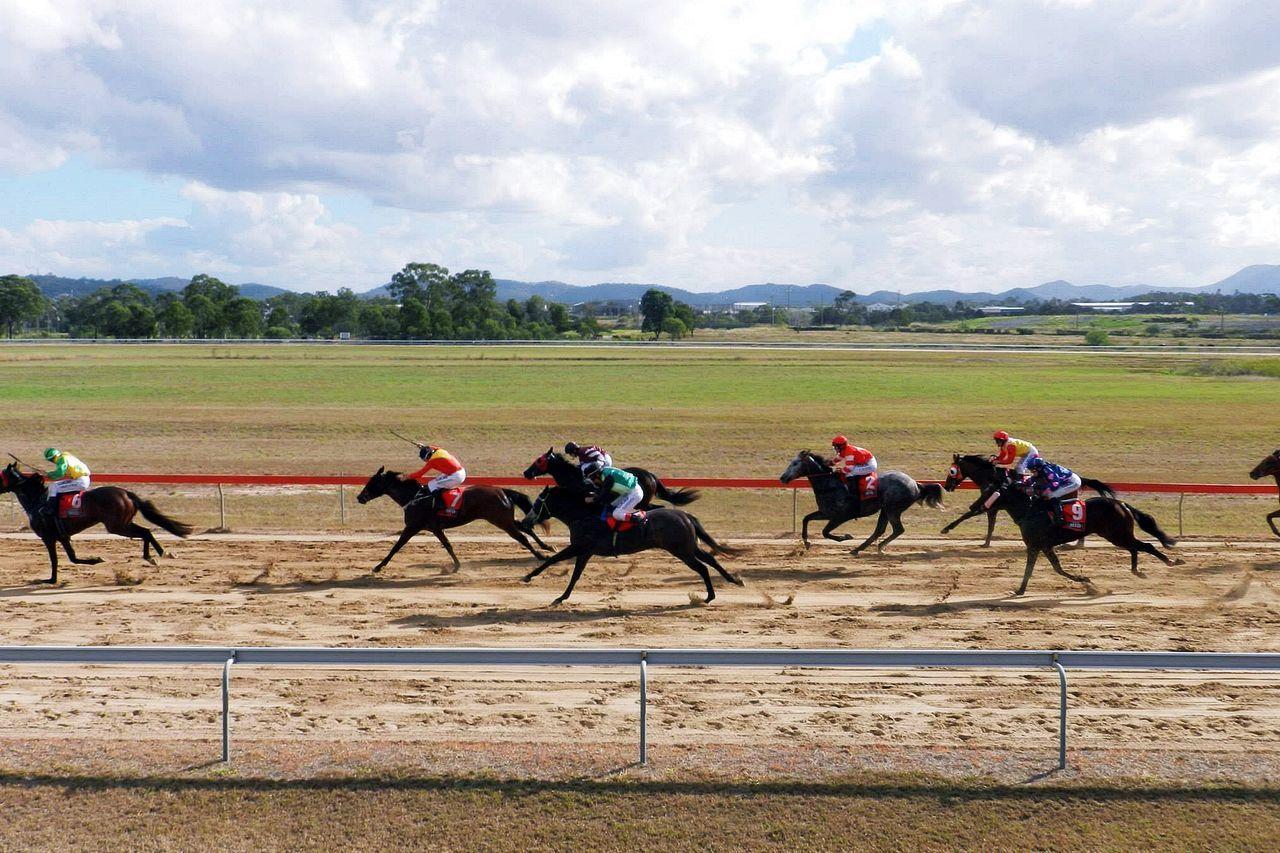 Adult Australia Australia & Travel Australian Sports Competition Day Derby Domestic Animals Gambling Horse Horse Racing Horserace Horseracing Horses Jockey Mammal Outdoors People Sky Speed Sportbet Sports Race Sports Track