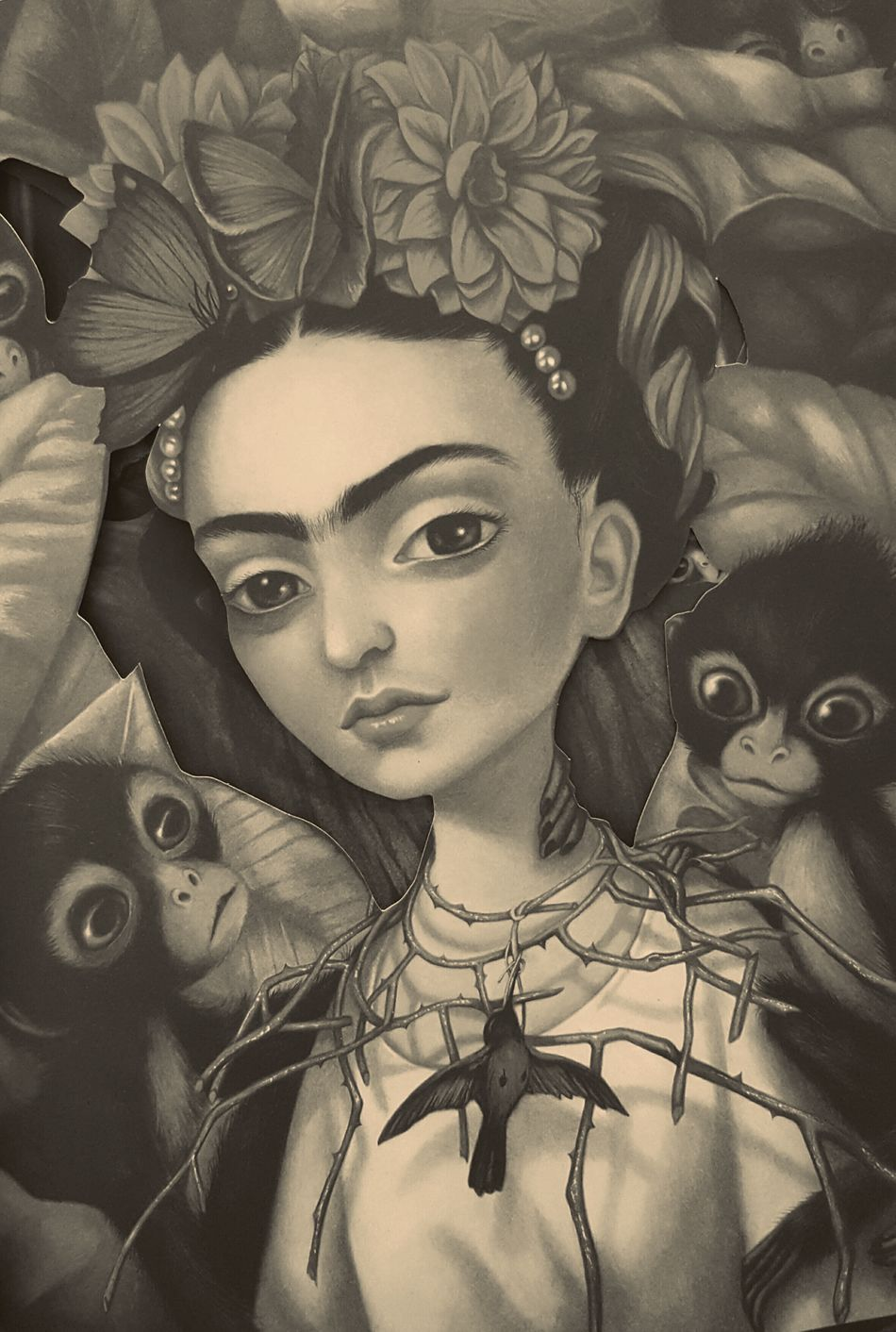 Frida Only Women Portrait Monkey Mexican Painter Kahlo