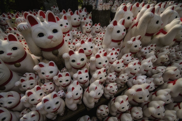 High Angle View No People Close-up Day Cat♡ Cat Lovers japan