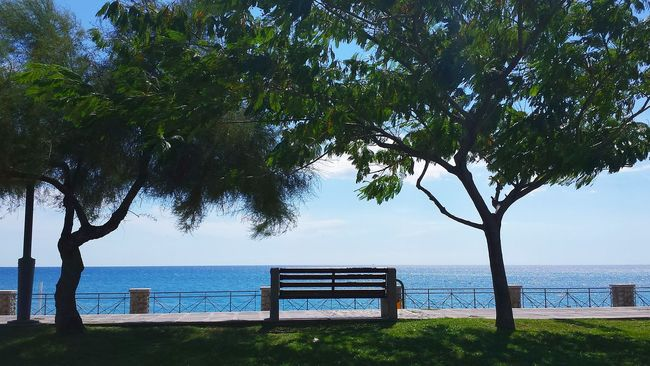 Time To Relax Come And Sit With Me For A While... Bench Enjoying Life Meerblick Beautiful View Showcase August At The Seaside Landscape Ladyphotographerofthemonth Light And Shadow Licht Und Schatten Einladend Looking Comfy  Benches Under Trees Benches Eyeem Collection