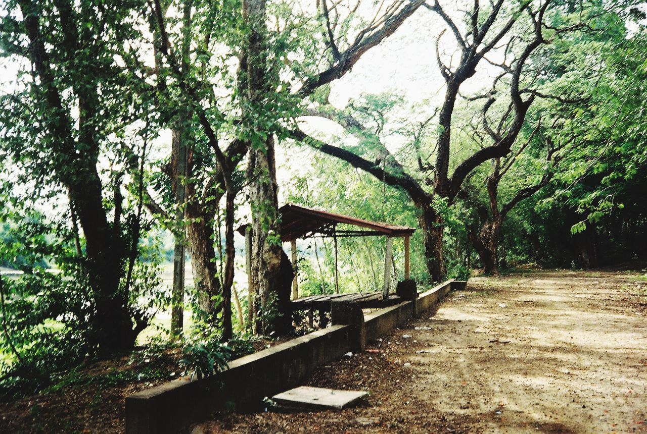 The Journey Is The Destination Thailand Green Color Land Forest Path 35ec2 Filmcamera Filmisnotdead Film Olympus 35ec