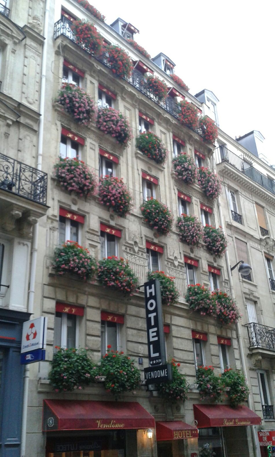 As January floridas de Paris!!! Flores Flowers Windows Windows With Flowers Hello World France Enjoying The Sights Flowerlovers