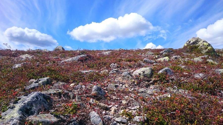 Cloud - Sky Sky Outdoors Day Nature No People Beauty In Nature Freshness Hiking Digervålen Lofsdalen
