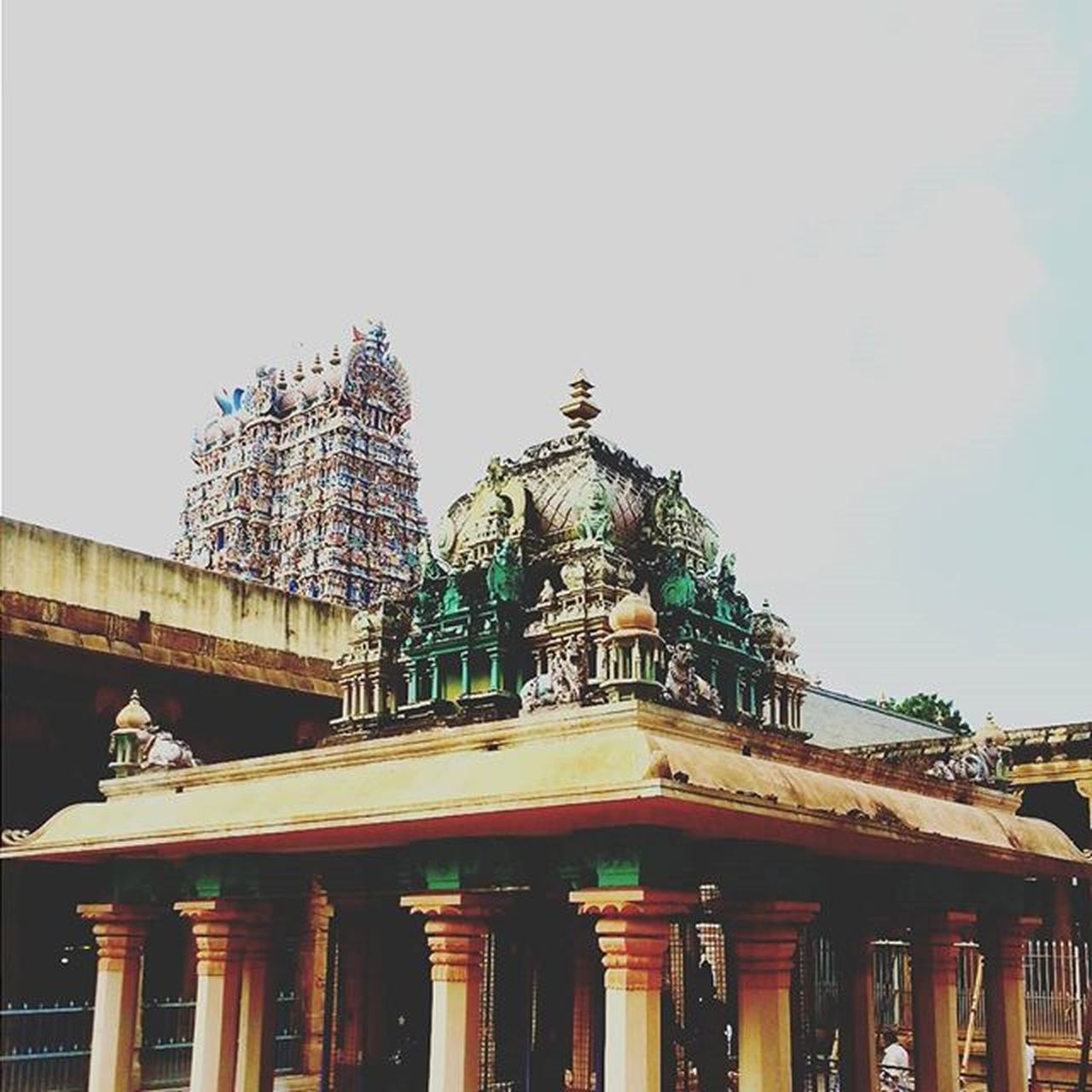 MeenakshiTemple Meenakshiammantemple Madurai Indiantemple India Southindia _soi Instatravel Travel Travel Traveljournal Pixelpanda_india Incredibleindia Picturesofindia Indiapictures Beautifulindia Hippieinhills Indiatravelgram Desi_diaries India Indianarchitecture Temple Temples Indiaclicks