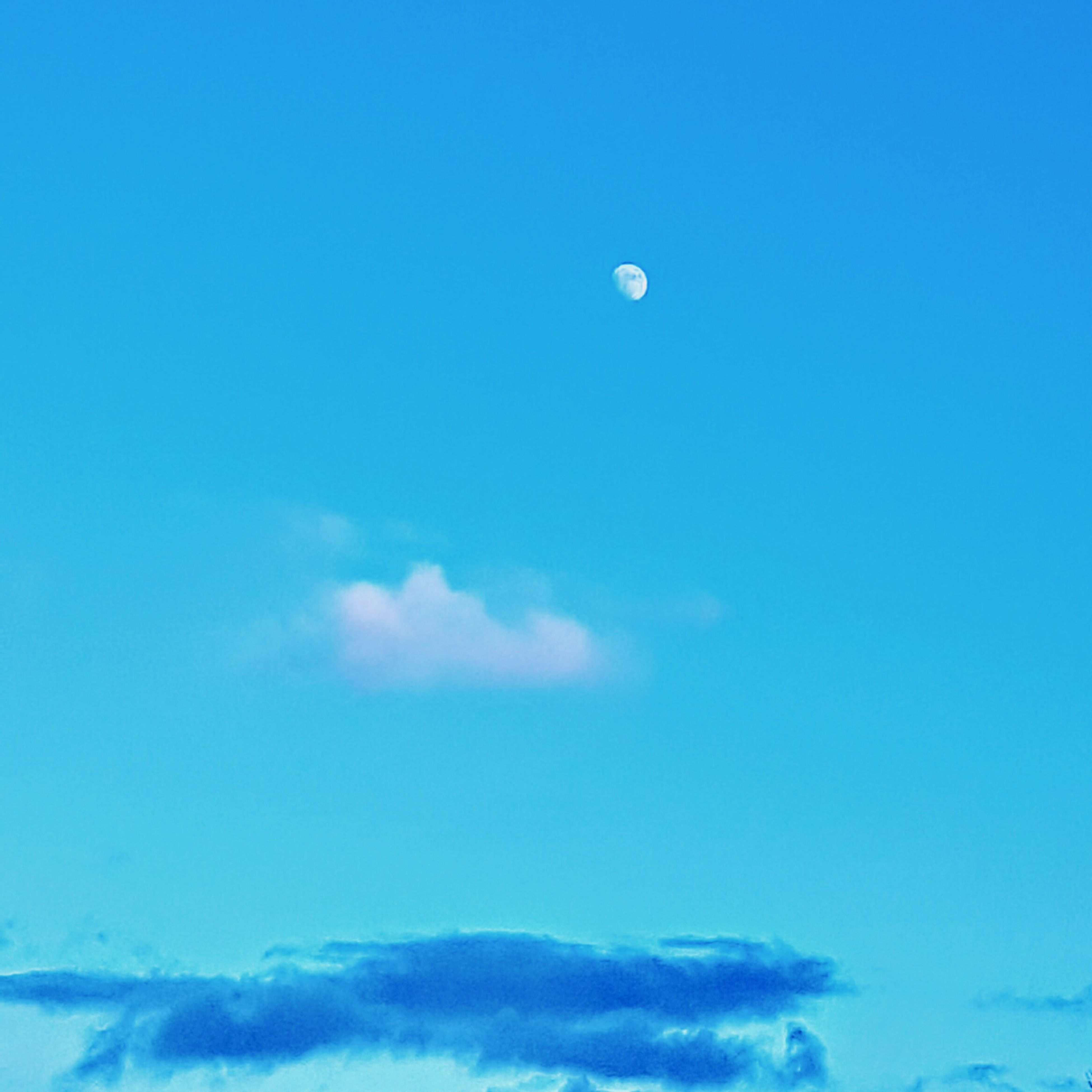sky, nature, moon, blue, beauty in nature, tranquility, scenics, flying, tranquil scene, no people, low angle view, cloud - sky, idyllic, outdoors, day, half moon, astronomy