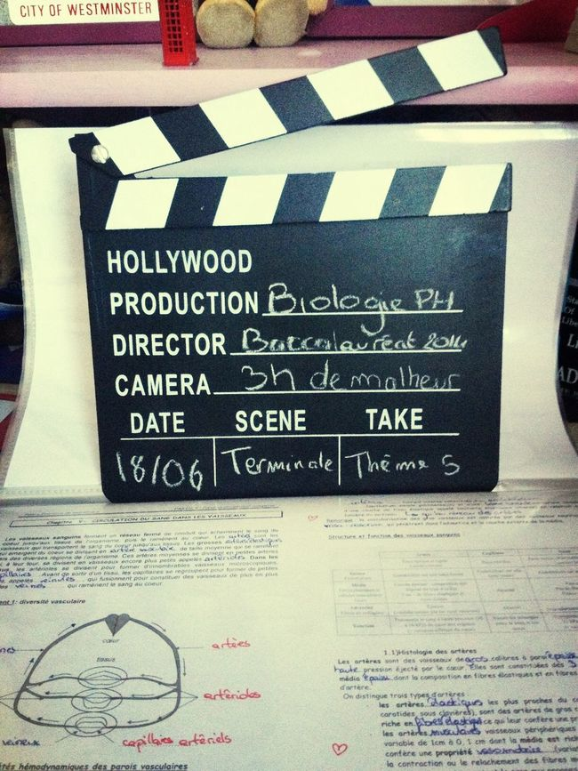 Hollywood And Action! Fatiguance