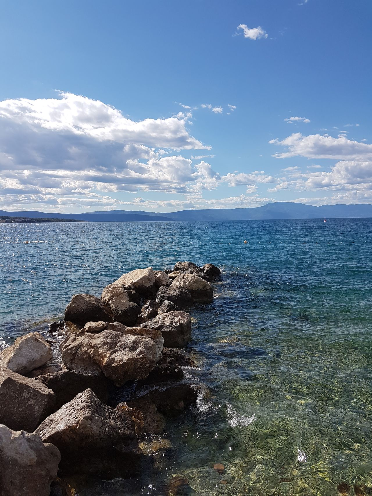 Water Sea Horizon Over Water Sky Sunlight Water Nature No People Outdoors Croatia Adriatic Coast Beach Day Beauty In Nature Animals In The Wild Animal Themes Representing Sea Life