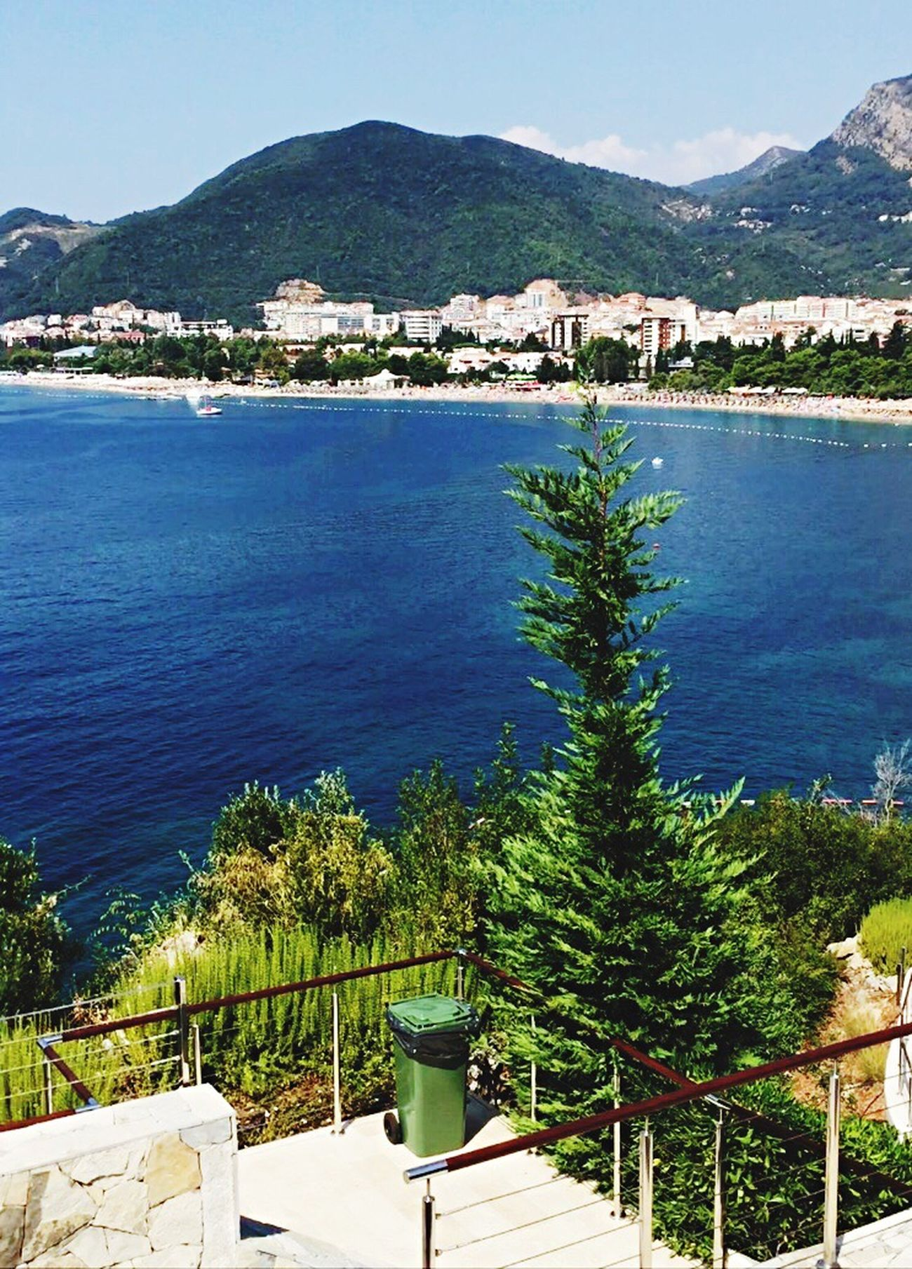 Sky_collection Sea And Sky Sea Nature Hilltop Clear Sky Tree Beauty In Nature Beautiful Clear Blue Sky Clear Sky Summer Day Summertime Summer Relax Budva,Montenegro