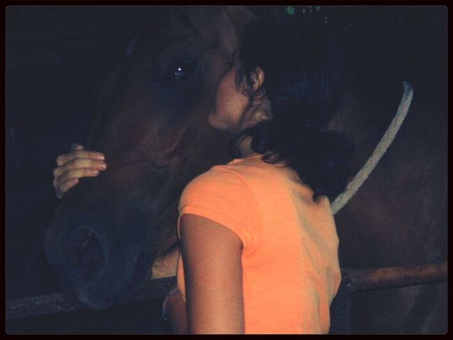 With Love#horse