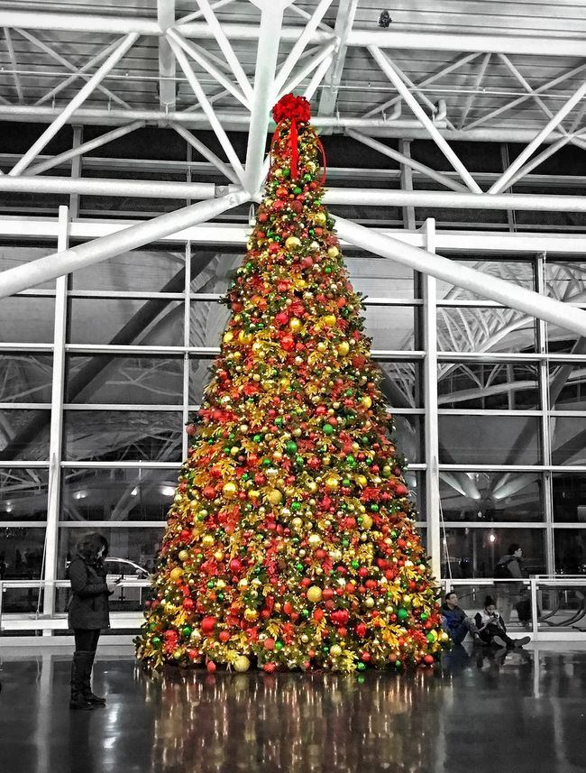 The Culture Of The Holidays at John F. Kennedy international Airport. JFK Airport NYC NYC Photography Xmas Xmas Tree Xmas Lights  Xmas In NYC Celebration Christmas Decoration Tourism Tradition Christmas Travel Destinations Vacations Christmas Tree Multi Colored Selective Focus Decoration Christmas Lights Decor Famous Place