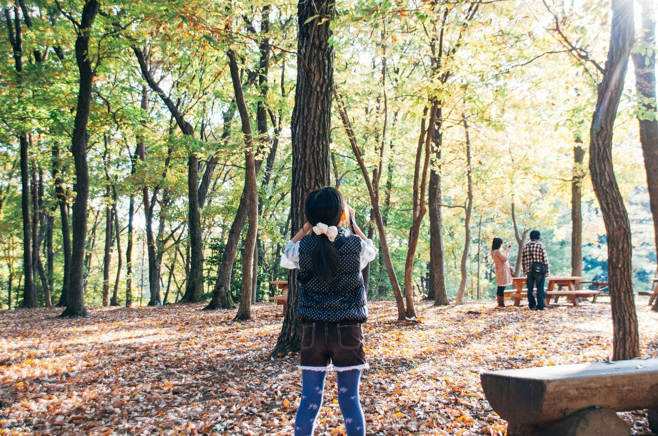 Taking Photos Nature Snapshot Autumn Photography Japan Leaves Eye4photography  EyeEm Best Shots Family Girl Daughter Landscape EyeEm Nature Lover Recommended Photographers January