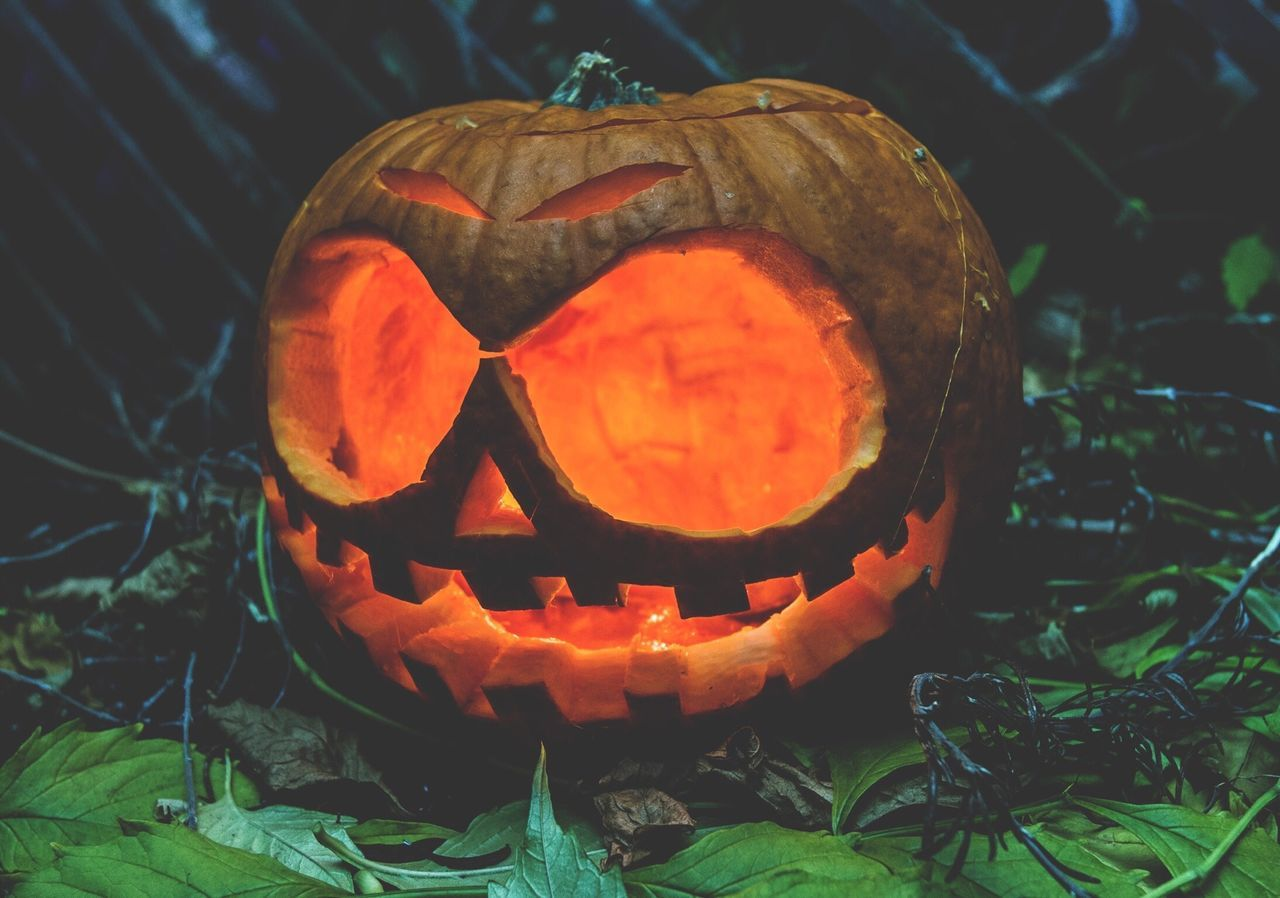 Beautiful stock photos of pumpkin, Arts Culture And Entertainment, Budapest, Carving Food, Day