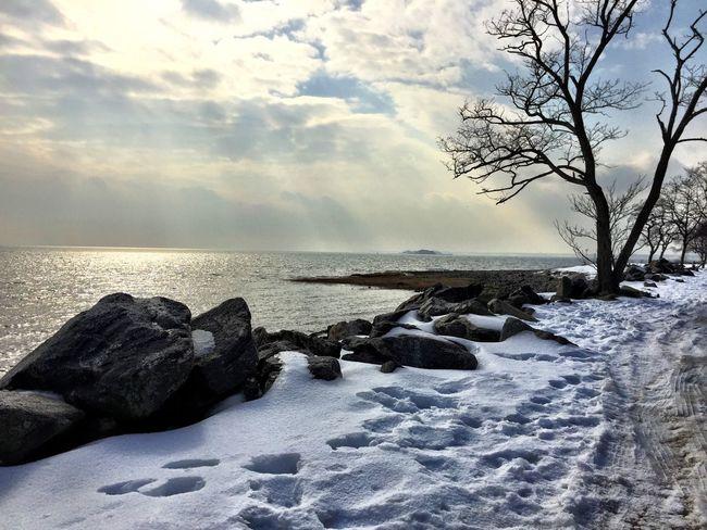 Shoreline Longisland Longislandsound Connecticut Snowy Winter Water Reflections Greenwich, CT