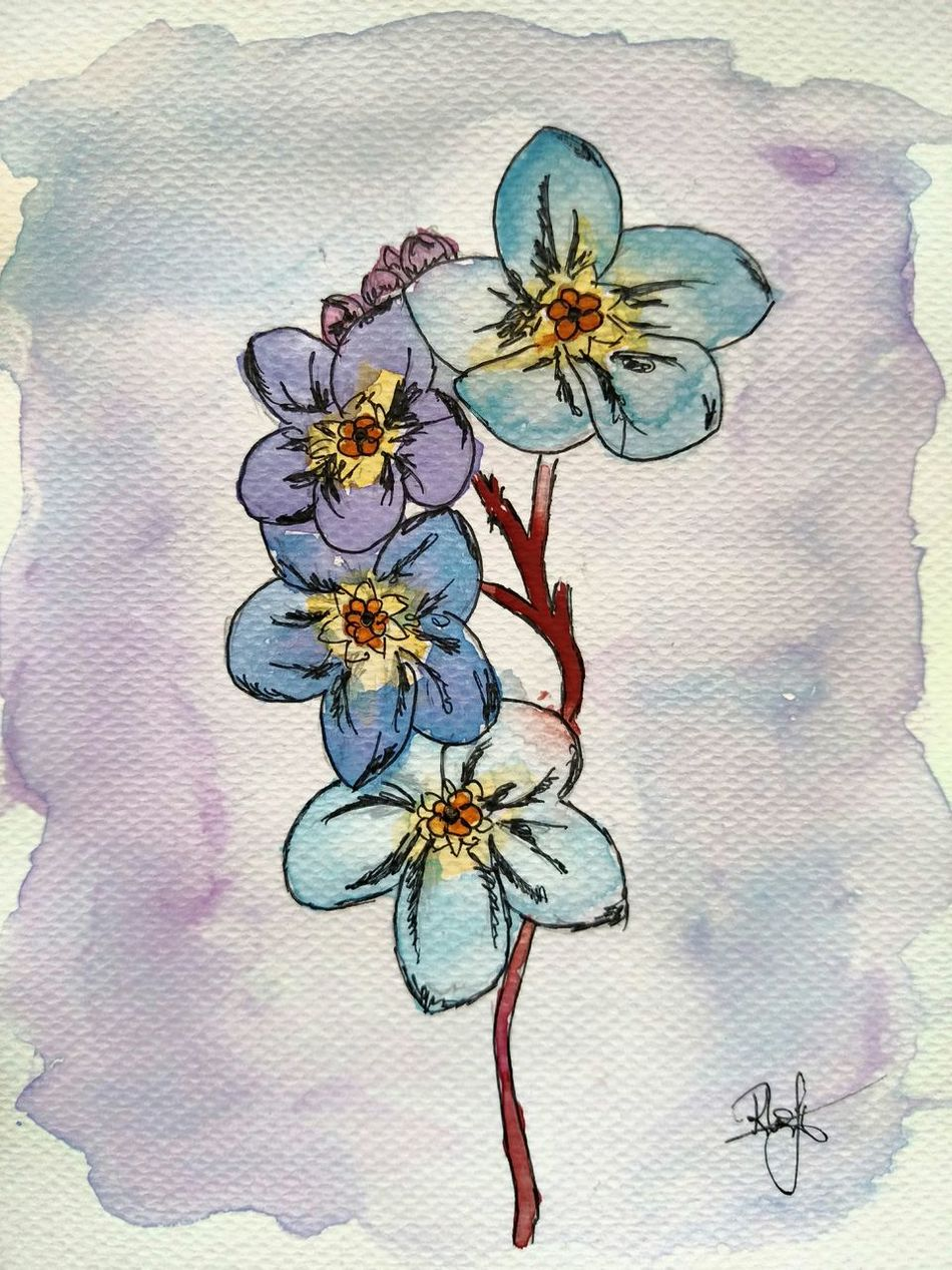 Watercolor Watercolour Nofilter NofilternoeditPainting Art ArtWork Image Flowers Forgetmenot Forget-me-not Forget-me-nots Mywork акварель рисунок рисую незабудки