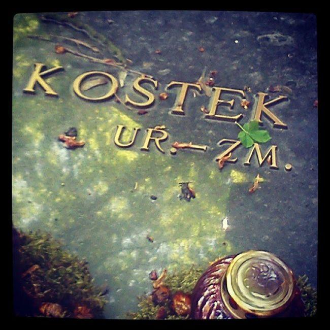 Człowiek jest jak Kostek: rodzi się, a potem umiera. Powązki Cemetery Kostek Grave