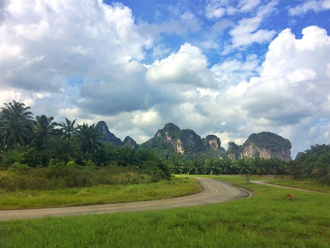 Landscape Landscape_Collection Landscape_photography Landscapes Landscape_photography Landschaft On The Road Road Roadtrip Road Trip Roads Nature Trees Nature_collection Traveling Travel Travel Photography Mountains Rock Rocks Green Thailand Travelling Spotted In Thailand Landscapes With WhiteWall