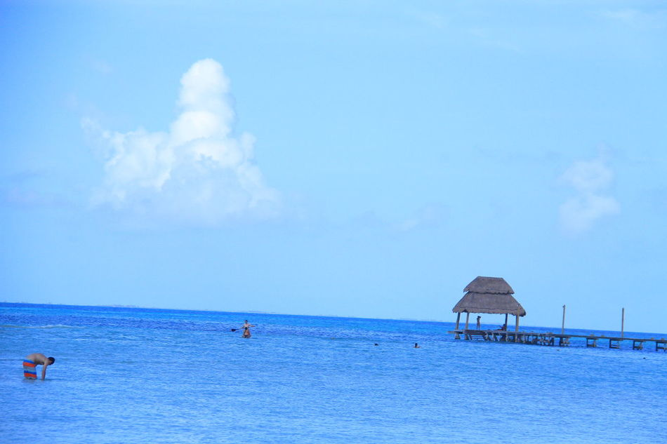 Beach Beauty In Nature Blue Caribbean Caribbean Life Caribbean Sea Caribe Cloud - Sky Day Horizon Over Water Isla Mujeres Isla Mujeres Cancun Isla Mujeres Mexico Mar Caribe Nature Outdoors Playa Norte Real People Scenics Sea Sky Tranquil Scene Tranquility Vacations Water
