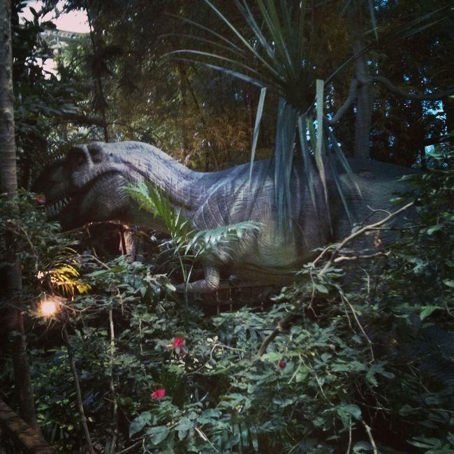 Jungle Biosphäre Dinosaurs