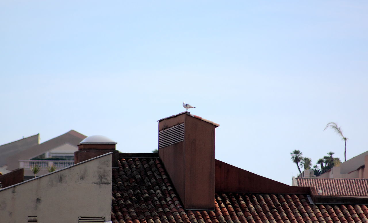 Adapted To The City Architecture Architecture Architecture_collection Building Exterior Built Structure Day EyeEmNewHere House Low Angle View Monaco No People Outdoors Residential Building Sky Millennial Pink