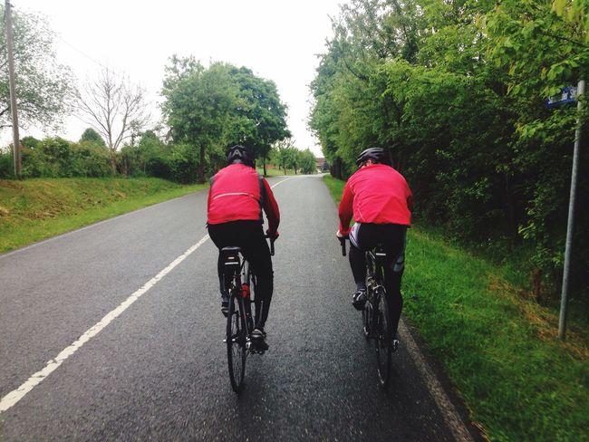 Zarrentin  Schaalsee Cycling