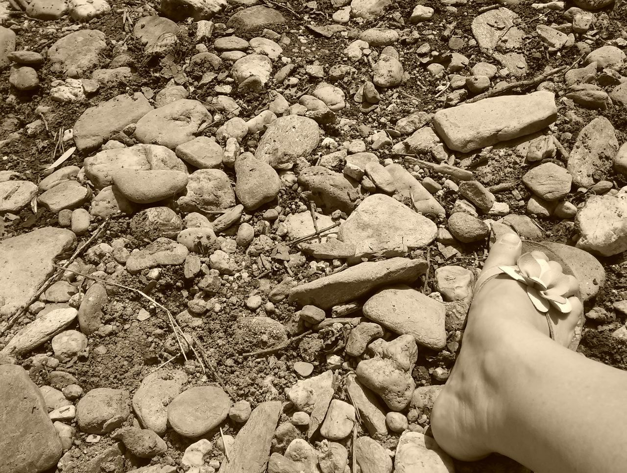 real people, human body part, one person, human leg, low section, outdoors, pebble, nature, beach, day, human hand, lifestyles, pebble beach, close-up, people