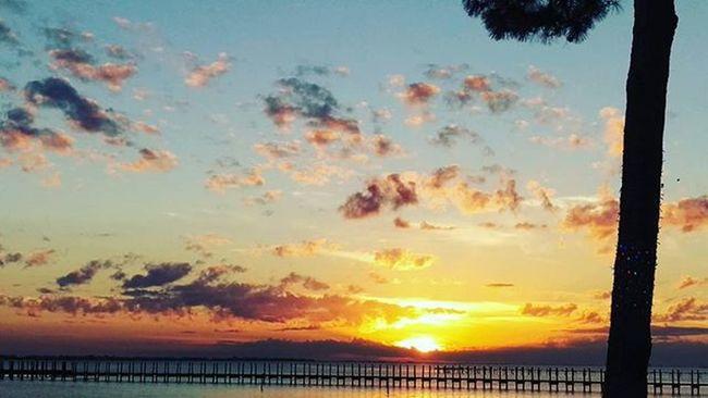 Here's one Sunset shot from my HTCOneM9 Htconelife Oneography 20 .7mp @htc @HTCUSA @HTC_UK @HTCelevate @HTCMEA @HTC_IN @HTCIreland @HTCCanada @HTCMalaysia @htcsouthasia @htcfrance TeamHTC @sharealittlesunshine @pureflorida Navarre LoveFl Emeraldcoast Emeraldcoasting Christmascelebration