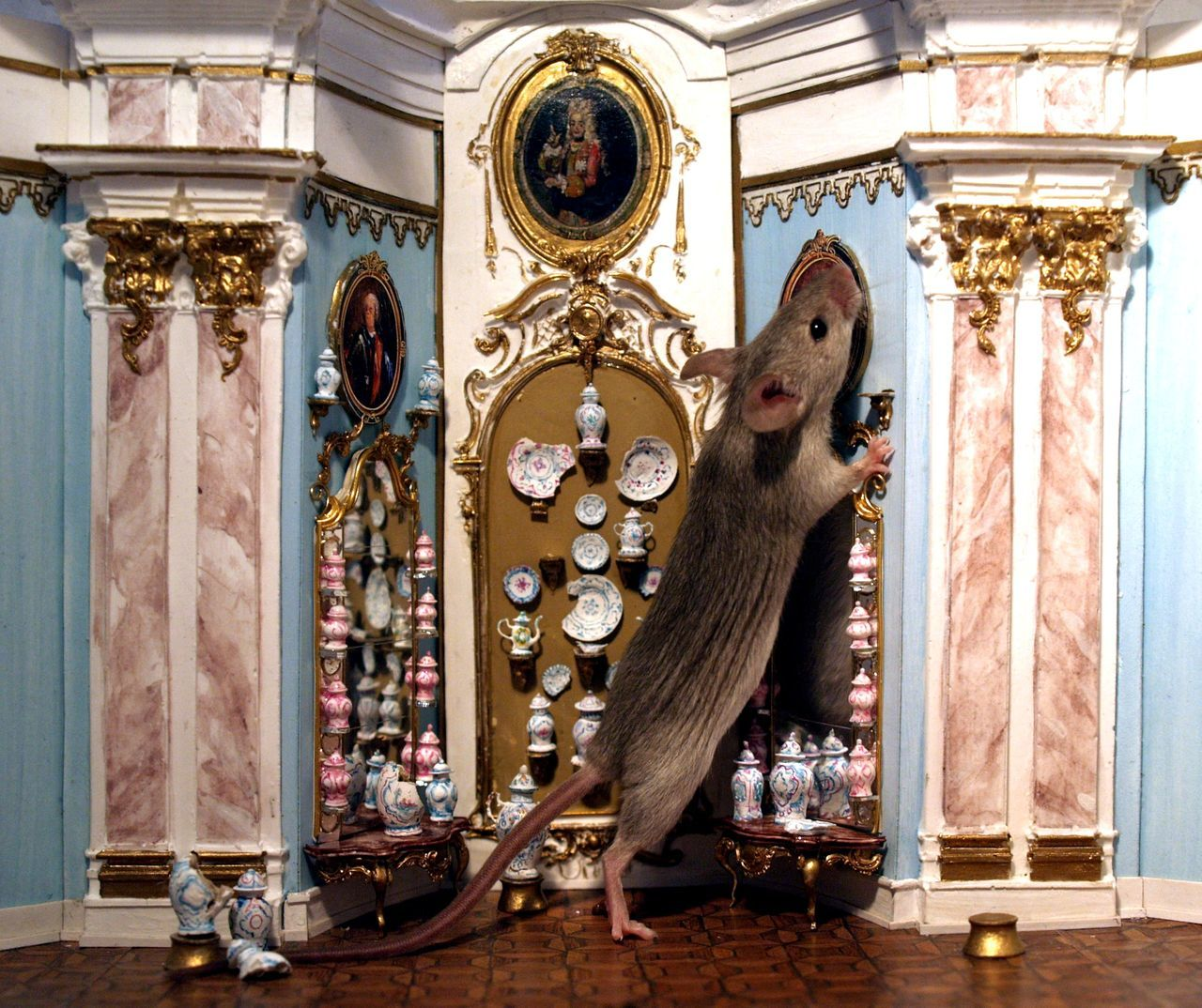 Anknabbern Eating Fressen Indoors  Kurios Kurioses  Maus Mouse Mouseaction Mouses Mause Odd Quaint  Quaint Animals Quaint House Quaint Mouses Rokoko Schloss Schräges Strange Strange Animals Strange Mouses Wandteller